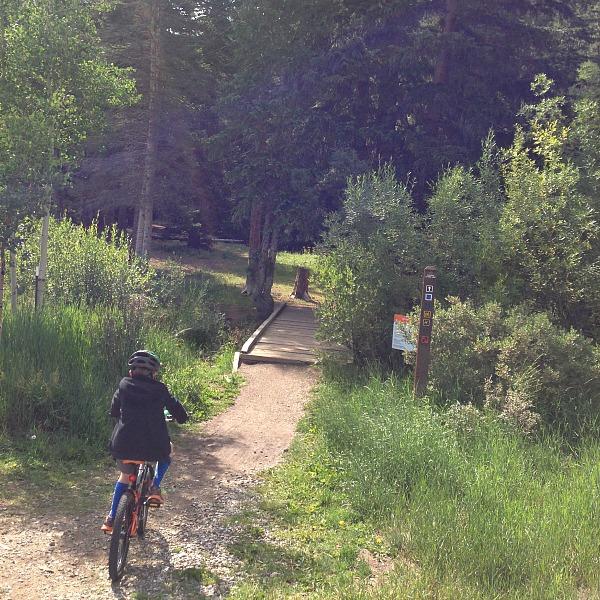 kids riding mountain bike trails
