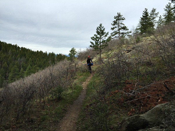 bikepacking colorado trail