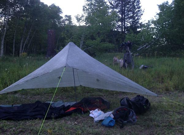 camping around Aspen Alley