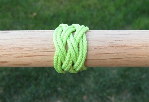 Practice knot with two passes.
