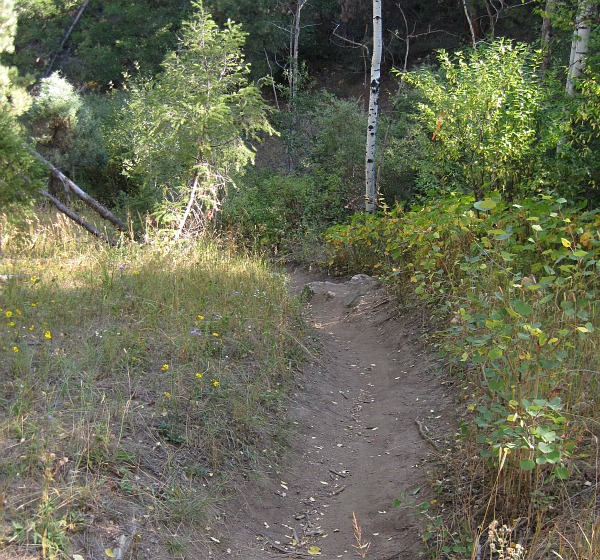 Keep riding, find more great trails
