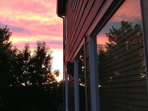 WindowReflection